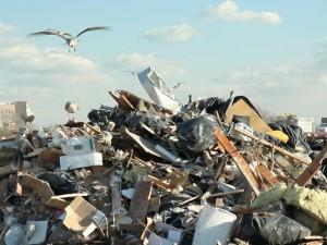 Debris Hauling NJ
